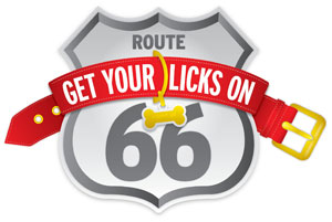 Get Your Licks On Route 66 Badge
