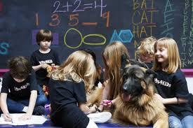 Trained K9 with school children