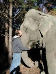 Scott Blais with elephant