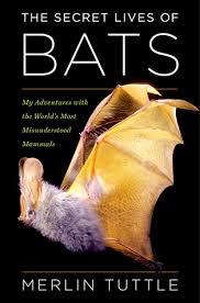 Secret Lives of Bats Book Cover