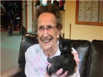 Senior Citizen with Kitten