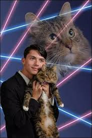 Senior Picture of Draven Rodriguez with Cat
