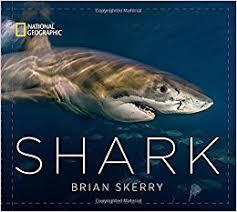 Shark Book Cover