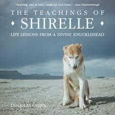 Teachings Of Shirelle Book Cover