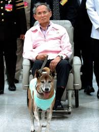 Thailand King with Copper