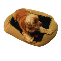 Dog on thermaFure dog bed