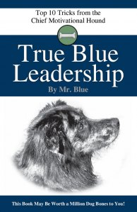 True Blue Leadership book cover