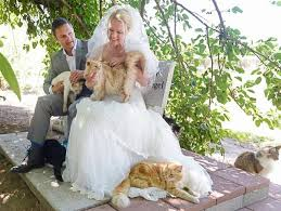 Wedding at Cat House on the Kings