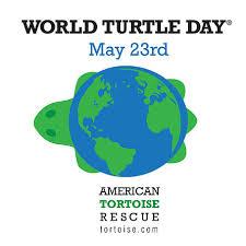 World Turtle Day Logo