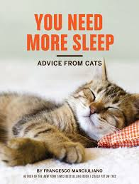 You Need More Sleep Book Cover