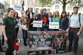 Yulin Protest