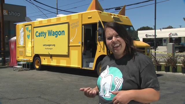 Aimee Gilbreth and the Catty Wagon on Animal Radio