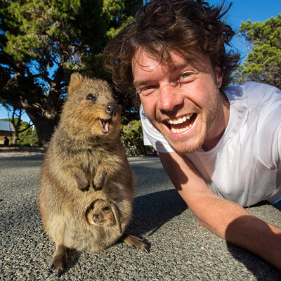 Allan with Quokka