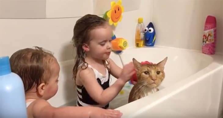 Bailey in Bathtub With Erin's Daughters