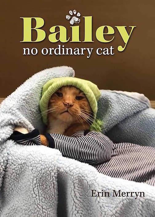 Bailey, No Ordinary Cat Book Cover