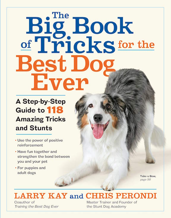 The Big Book Tricks For The Best Dog Ever Book Cover