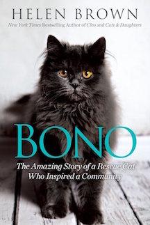 Bono Book Cover
