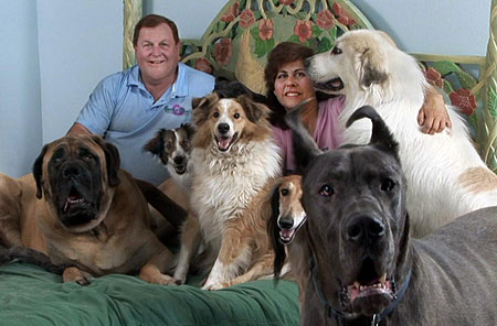 Burt Ward and Wife With Dogs on Bed
