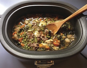 Stew For Dogs