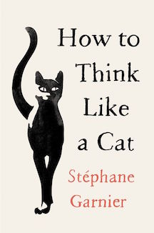 How To Think Like A Cat Book Cover