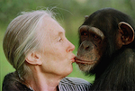 Dr. Goodall with Chimp