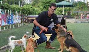 Jeffrey Beri with Dogs