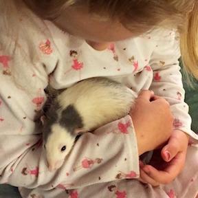 Child with Rat