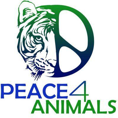 Peace4Animals Logo