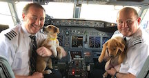 Pilots with Pups