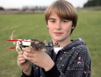 Rat Drone