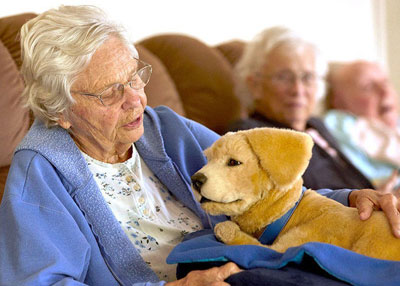 Robotic puppy helps those with Dementia