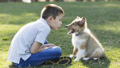 Talking Baby Talk To Pets