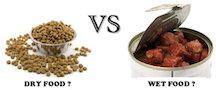 Dry Food vs. Wet Food Bowls