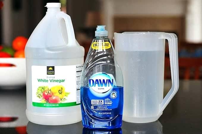 White Vinegar and Dawn Dish Detergent